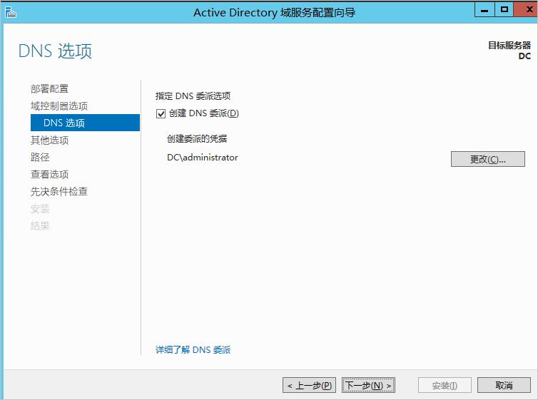 配置DNS选项